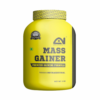 MASS GAINER GAINERS – ABSOLUTE NUTRITION