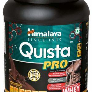 Quista Pro Protein + Multivitamins - HIMALAYA